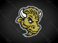 Vintage Colorado Buffaloes Update