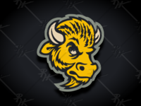 Vintage Colorado Buffaloes Update (Classic Colors)