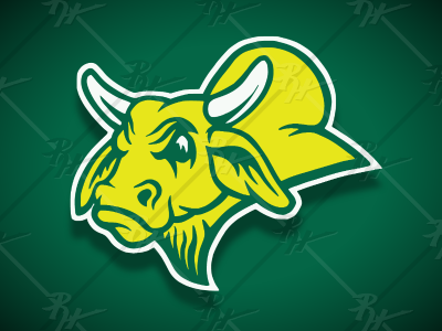 Vintage Style USF Golden Brahman + brahma bulls bull tampa golden brahman new south florida usf antique high school classic vintage logo college ncaa basketball football mascot athletics sports