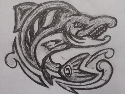 Seattle Sockeyes Concept Sketch