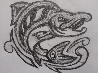 Seattle Sockeyes Concept Sketch