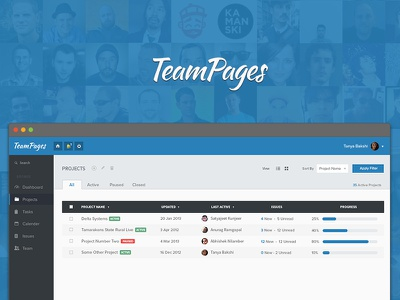 Projects Overview flat blue project management dashboard