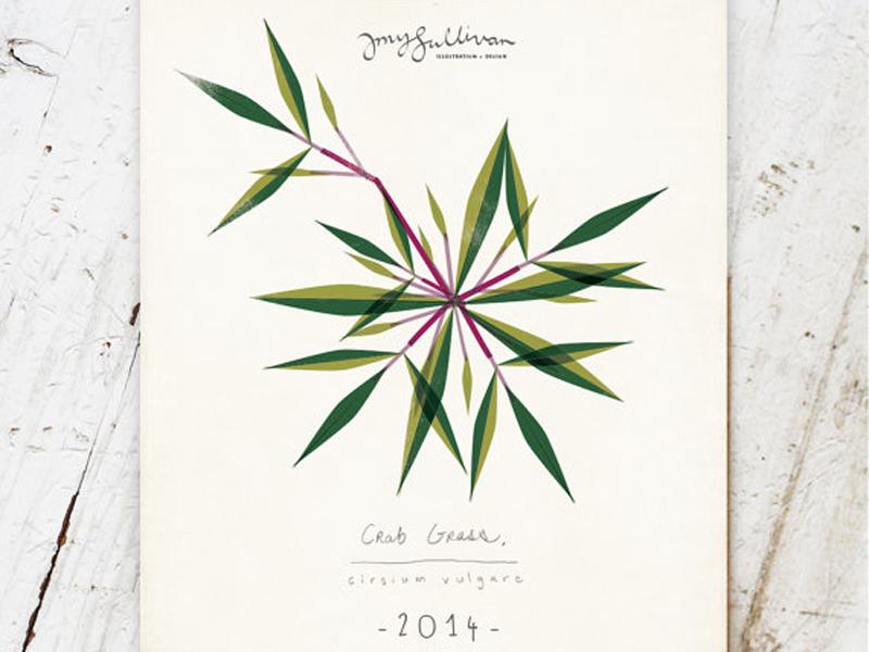 Weeds Botanical Wall Calendar illustration plants weeds modern geometric nature