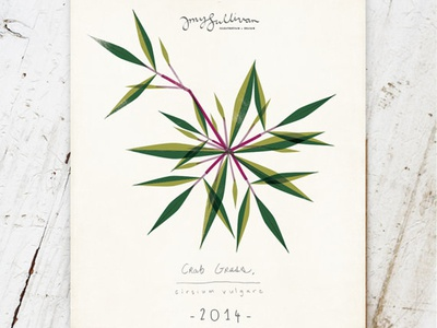 Weeds Botanical Wall Calendar