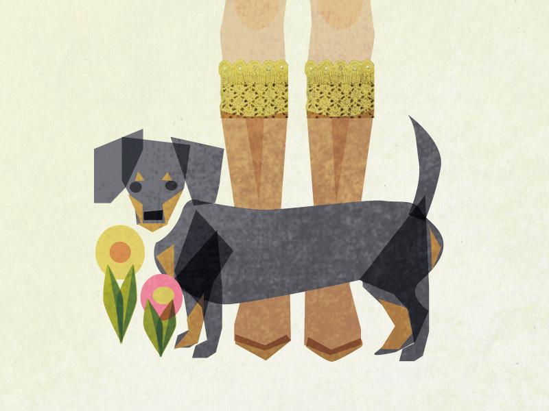 Vogue Knit Shot illustration dog flower spring boots vogue