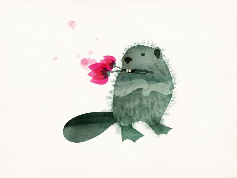 Nonconformist Beaver amy sullivan rebel watercolor drawing beaver animal illustration