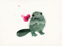 Nonconformist Beaver