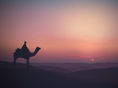 Desert Sunset, Landscape 3 desert landscape