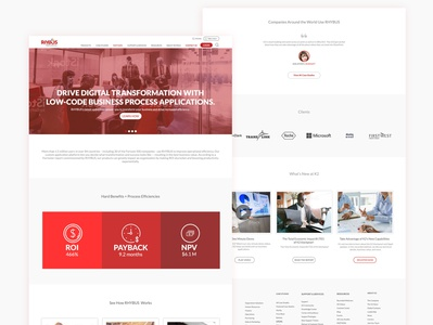 RHYBUS Website UI UX