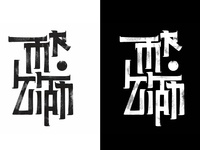 Mr.Zian Logo work
