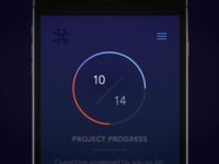 Project Progress Bar for Quantified Company