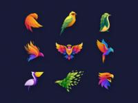 Bird Colorful Logo Collection