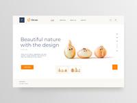 Web design  Onion