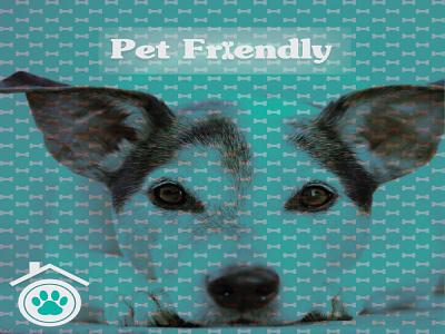 Pet Friendly vector typography bone pet green logo dog design color friendly branding