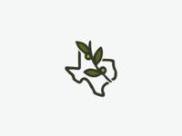 Texas Olive Oil - #1