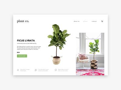 Plant co. website minimal web ux ui design branding