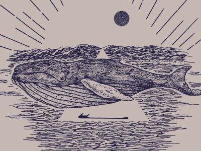 Whale drb 1