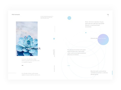 Day.228 New World P.135 white placeholder minimalist layout graphic format element creativity constitution character