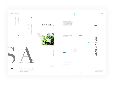Day.272 New World P.154 white placeholder minimalist layout graphic format element creativity constitution character
