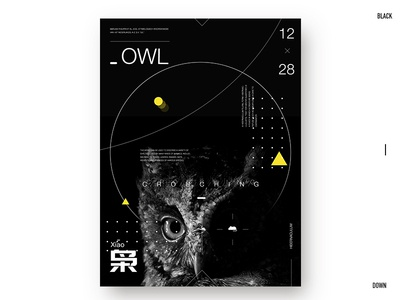 Day.354 P. | Crouching text typegraphic plate owl photo poster design format placeholder layout graphic character