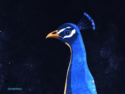 National Bird - Peacock digitalart art bird minimal illustration interactions visual designs