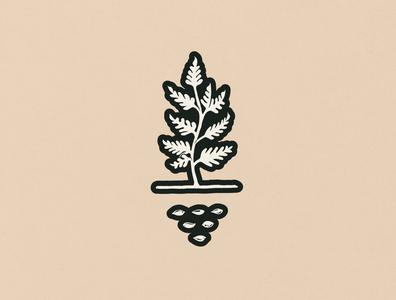 Time to Grow arizona grow plant graphic drawing logo illustration artwork design
