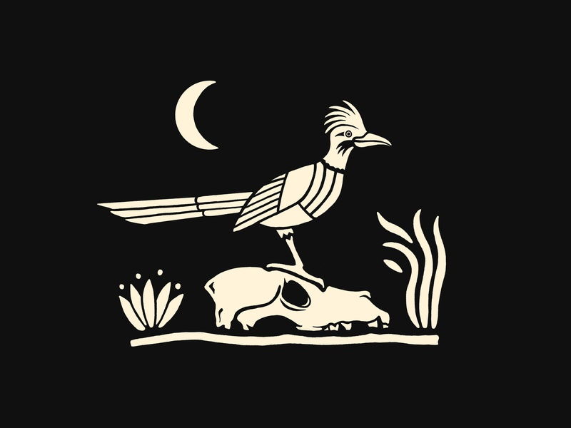 Meep Meep wilderness wild art digital white black skull runner road arizona sketch ipad design illustraion