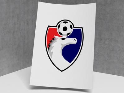 FLK 1 soccer logo