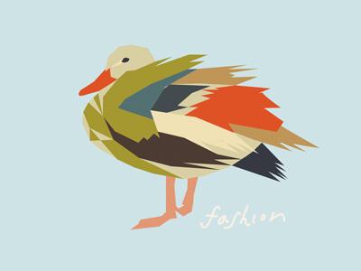 duck fashion color illustration duck
