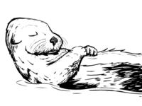 Otter Nap