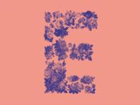 #Typehue 5: E