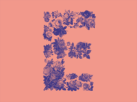 #Typehue 5: E type letter dropcap e typehue