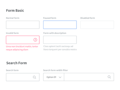 Form Styles style field ui invalid error filter search disabled focus active input form