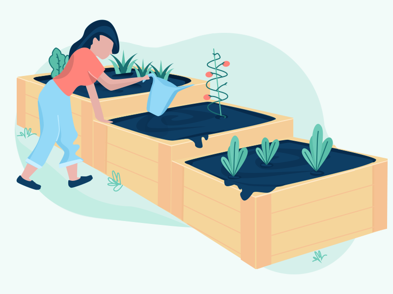 Springtime Gardening vector illustration outdoors spring vegetable garden plants gardening