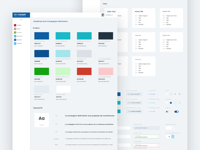 Guideline - La compagnie des Vétérinaires guide page tooltips color guideline lettering type icon ux typography logo branding uiux interface dribbble website web direction artistique ui design