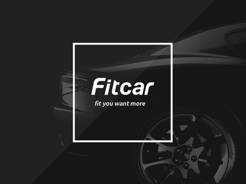 Fit car logo type logo
