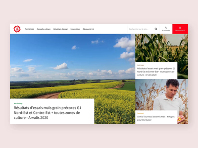LG Seeds - Homepage animation overlay hover e-commerce seeds agriculture scroll video homepage design website layout ux ui web design web graphic design