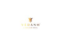 Vedanm stationary food brand icon mark branding logo