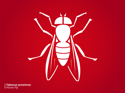 Bloodsuckers Horsefly stylized illustration bugs
