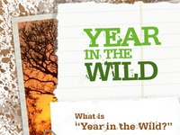 Year in the Wild