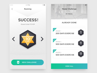Fitness interface3