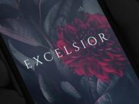 Excelsior Splash Screen
