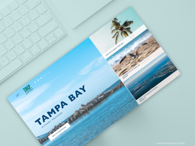 Tampa Bay - Home page Concept blue and white ux  ui homepage
