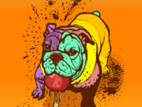 Bulldog with color patches