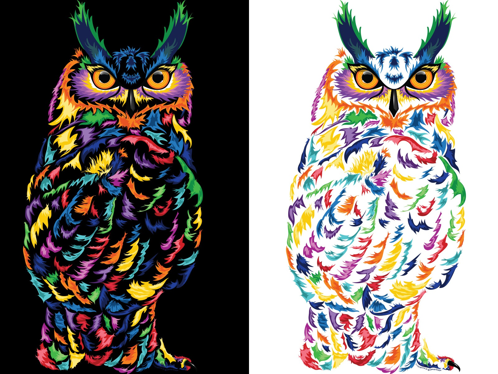 - Colorful Owl By Natalia Perez Wahlberg On Dribbble
