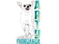 Arty the Chihuahua