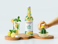 Mojito Packaging Design beverage bottle graphicdesign artoftheday branding logo illustration design packaging design mojito