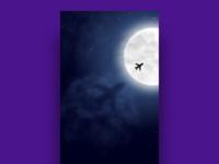Flight shadow under moon light - Wallpaper