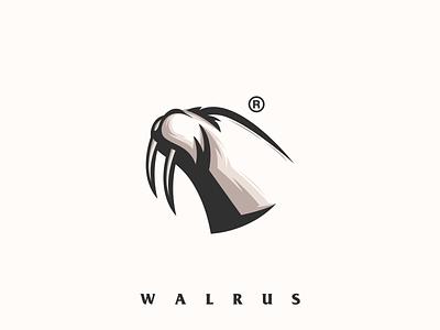 Walrus awesome logo design strong logo ideas logoinspirations logo inspiration illustration vector logos logoidea logo animal walrus