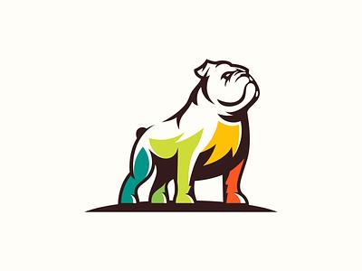 dog loog fullcolor pitbull bulldog dog mascot sports character masculine games designs brand esport branding logo